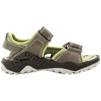 Chaussures Fille Sandales et Nu-pieds Primigi DAMIAN Gris