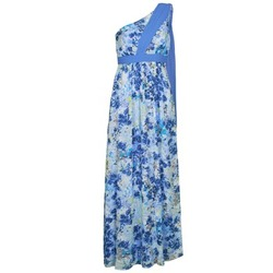 Vêtements Femme Robes longues Manoukian 613356 Bleu