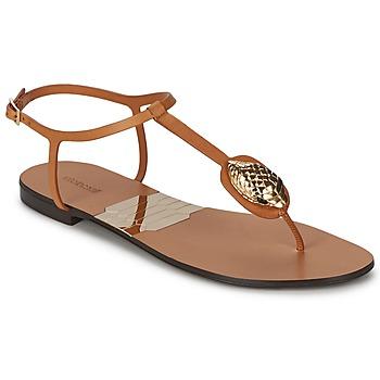 Chaussures Femme Tongs Roberto Cavalli XPX243-PZ220 Marron