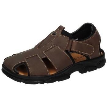 Chaussures Homme Sandales et Nu-pieds Dliro  Marron