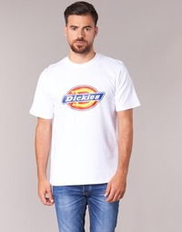 Vêtements Homme T-shirts manches courtes Dickies HORSESHOE TEE Blanc