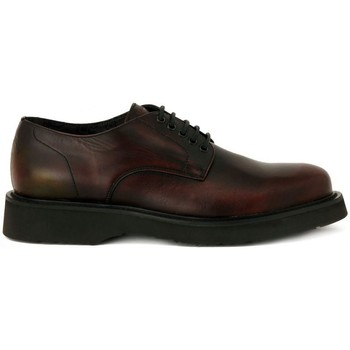 Chaussures Homme Derbies Frau DUKE  BURGUNDY    118,1