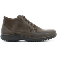 Chaussures Homme Boots Enval 4897 Ankle Man Brun Brun