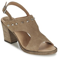 Chaussures Femme Sandales et Nu-pieds Betty London EGALIME Taupe