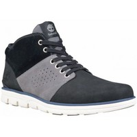 Chaussures Homme Baskets montantes Timberland HALF CAB NOIR