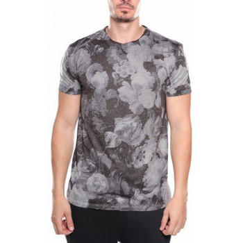Vêtements Homme T-shirts manches courtes Deeluxe T-SHIRT MIGHT gris