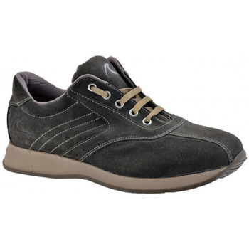 Baskets montantes Docksteps Faible Globe Casual Sneakers