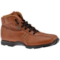 Chaussures Homme Randonnée Docksteps Coin haut Casual montantes