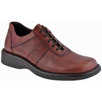 Boots Nicola Barbato CampurCasualmontantesCasualmontantes Casual montantes