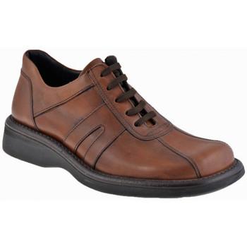 Boots Nicola Barbato Campur Casual montantes