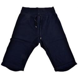 Vêtements Femme Shorts / Bermudas Converse ChevalfaibleShorts Bleu