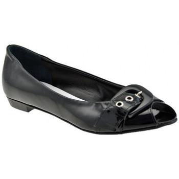 Chaussures Femme Ballerines / babies Lea Foscati Spuntata Ballerines Noir