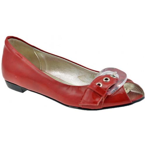 Chaussures Femme Ballerines / babies Lea Foscati Gun Boucle Ballerines
