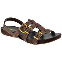Chaussures Femme Sandales et Nu-pieds Lea Foscati 3 Straps Sandales Marron