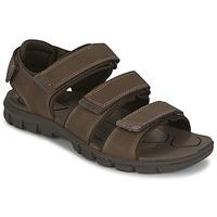 Chaussures Homme Sandales et Nu-pieds Caterpillar ENTRANT Marron