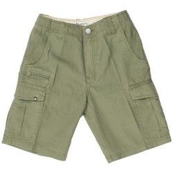 Vêtements Homme Shorts / Bermudas Billabong Short Scheme Cargo - Dark Surplus Autres