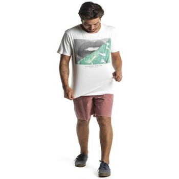Vêtements Homme T-shirts manches courtes Insight T-Shirt  Loaded Youth Then - Dusted blanc