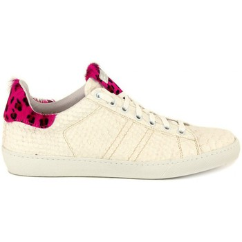 Chaussures Femme Baskets basses Stokton PITONE PANNA    119,9