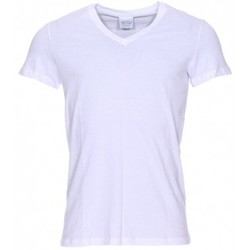 Vêtements Homme T-shirts manches courtes Hom Lot de 2 tee-shirts col V Business  en pur coton blanc BLANC