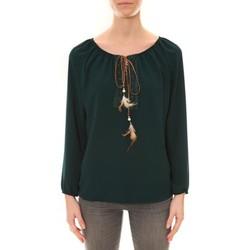 Vêtements Femme Tuniques Dress Code Tunique ZINKA Vert Vert