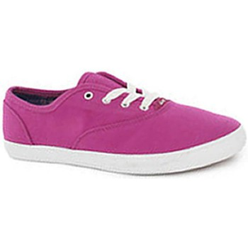 Baskets basses DVS Chaussures  Dewy - Magenta Canvas