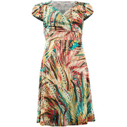 Vêtements Femme Robes courtes Fifilles De Paris Robe  Florence Multicolore MULTICOLORE