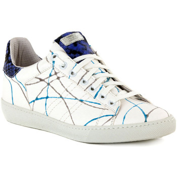 Chaussures Femme Baskets basses Stokton ALICE TURCHESE    121,6