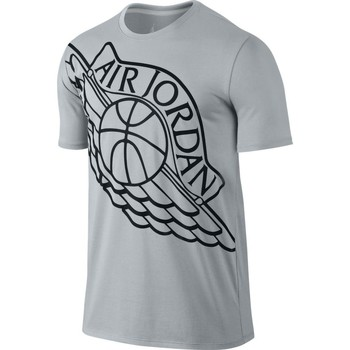 Vêtements Homme T-shirts manches courtes Nike Wingspan Tee Grey