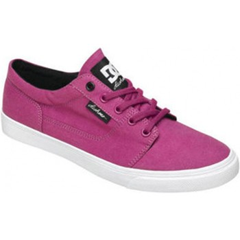 Baskets basses DC Shoes BRISTOL CANVAS Purple Wine