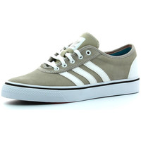 Chaussures Homme Baskets basses adidas Originals Adi Ease Multicolore