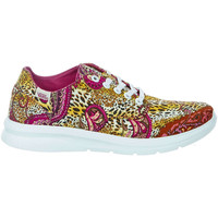 Chaussures Femme Baskets basses Vans Baskets  Iso 2 Multicolore Femme Multicolor