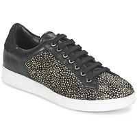 Chaussures Femme Baskets basses Maruti NOVA Noir / Blanc