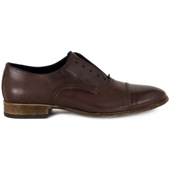 Chaussures Homme Derbies Soldini TEQUILA MORO  86,6