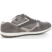 Chaussures Homme Baskets basses Igi&co 5684200  Homme Grey Grey
