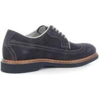 Chaussures Homme Baskets basses Nero Giardini P604130U  Homme Indios Blue Indios Blue