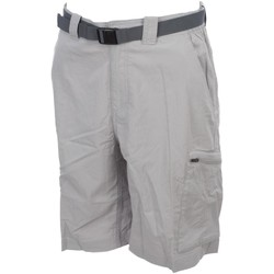 Vêtements Homme Shorts / Bermudas Columbia Silver ridge short gris Gris clair