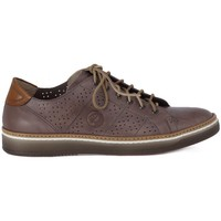 Chaussures Homme Baskets basses Lion ETRUSCO 211 PERLA Grigio