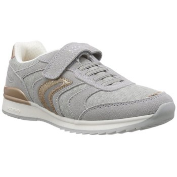 Chaussures Femme Baskets basses Geox j6203b gris
