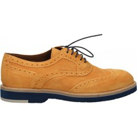 Chaussures Homme Derbies Wexford VELOUR MISSING_COLOR
