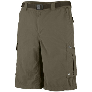 Vêtements Homme Shorts / Bermudas Columbia Silver Ridge Cargo Short Beige