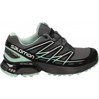 Chaussures Femme Baskets basses Salomon WINGS FLYTE GTX MISSING_COLOR