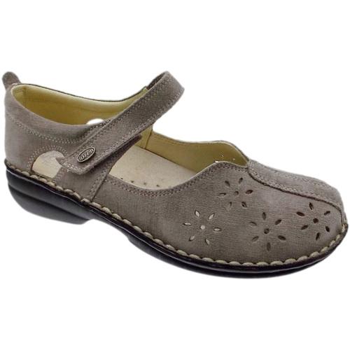 Chaussures Femme Ballerines / babies Loren LOM2313ta tortora