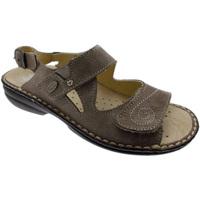 Chaussures Femme Sandales et Nu-pieds Calzaturificio Loren LOM2595ta tortora