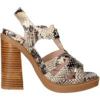 Chaussures Femme Sandales et Nu-pieds Bronx 84436-B Sandale Femme Marron Taupe Marron Taupe
