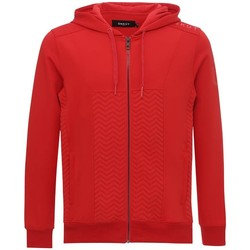 Vêtements Homme Sweats Ünkut Sweat à capuche Storm Rouge Rouge