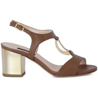 Chaussures Femme Sandales et Nu-pieds Albano SOFT CUOIO     85,8
