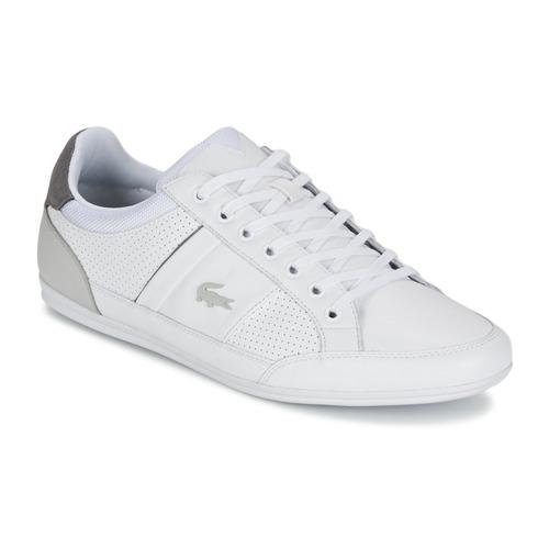 Chaussures Homme Baskets basses Lacoste CHAYMON 316 1 Blanc / Gris