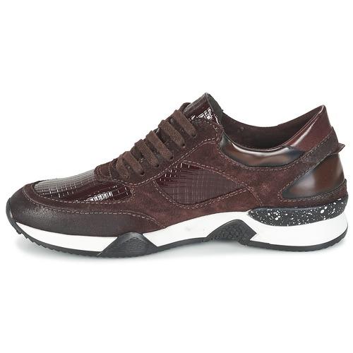 Basses Femme Farrica Baskets In Green Dream Chaussures Bordeaux lKTJc1F3