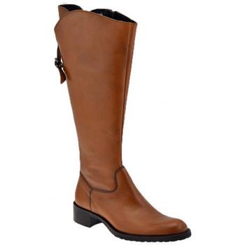 Chaussures Femme Bottes ville Dmn Réglable Bottes
