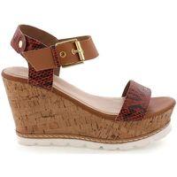 Chaussures Femme Sandales et Nu-pieds Maria Mare 66545 marron